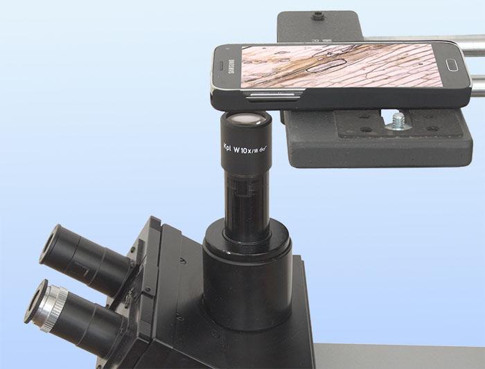 Fotografie mit dem mikroskop. microfotografie