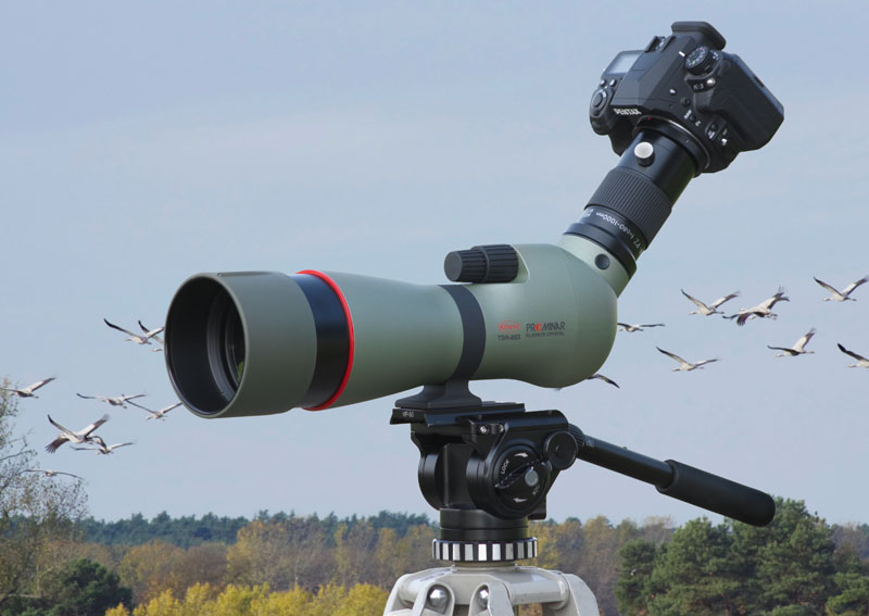 Kowa prominar tsn spotting scope spektiv